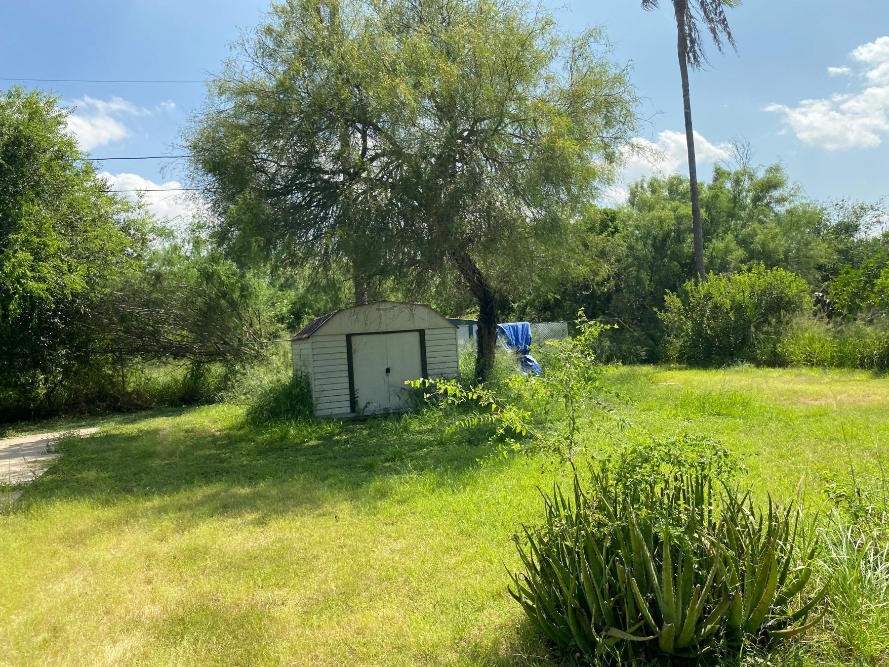 Palmview, TX RV park with green space